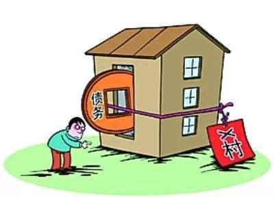 王丽惠:农村村级债务的形成与化解
