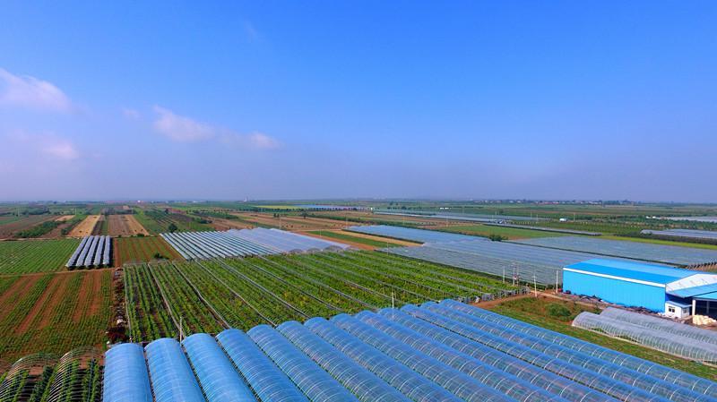 赵静:构建脱贫攻坚与乡村振兴相衔接的五大机制